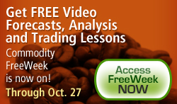Free Trading Video